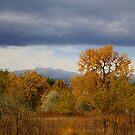Colorado Autumn by Katagram