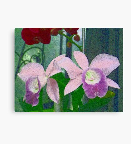 Twin Orchids Canvas Print