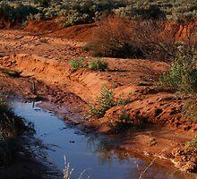 Desert Water - Road to Silverton by Joanne Emery