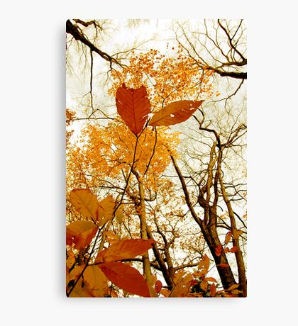 Withering Heights Canvas Print