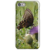 Butterfly 7 iPhone Case/Skin