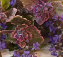 Bugleweed Blossoms  Sticker