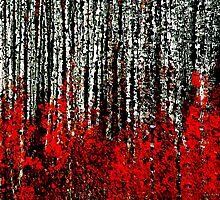 Aspen Abstract by Barbara D Richards