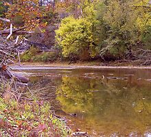 Reflections of Fall, War Eagle Mill River NWA by David  Hughes