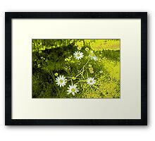 cartoon flowers Framed Print
