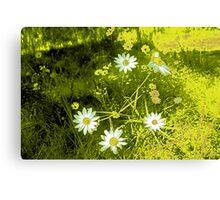 cartoon flowers Canvas Print