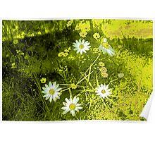 cartoon flowers Poster