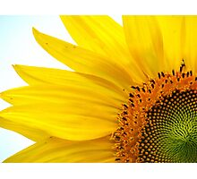 Feeling Sunny Photographic Print