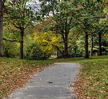 Autumn Walk in the Park by Monica M. Scanlan