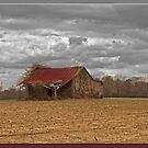Old Barn in HDR by Kelvin  Taylor