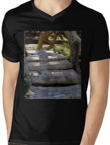 Steps Of The Old Mill Mens V-Neck T-Shirt