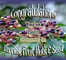 berries fruit nut seed banner challenge by vigor