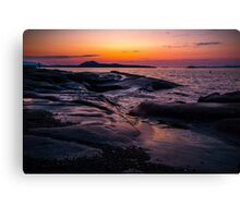 Catching the Sun Canvas Print