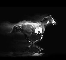 Galloping Pinto Horse and Smoke by NaturePrints