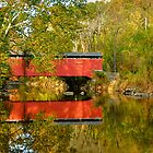 October at Foxcatcher Bridge by Monte Morton