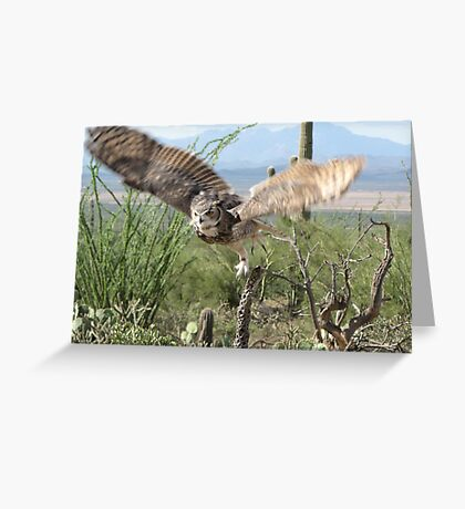 Great Horned Owl ~ Captive Greeting Card