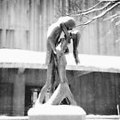 Winter Love - Central Park Kiss - New York City by Vivienne Gucwa