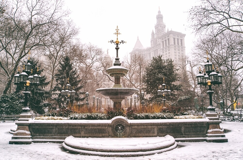 Winter in the City - Manhattan by Vivienne Gucwa