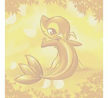 Snivy Photographic Print