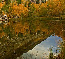 Bishop Roadside Reflection by photosbyflood