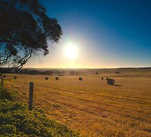Hay Bales by Nathan Waddell