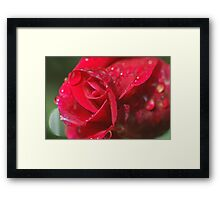 Crying beauty Framed Print