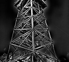 Lookout Tower by OneRudeDawg