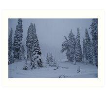 First Snowstorm Art Print