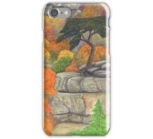 Buzzard's Roost at Fall Creek Falls iPhone Case/Skin