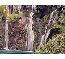 Hana Waterfalls in Hawaii Photographic Print
