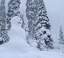 Snowman's Paradise by Tori Snow
