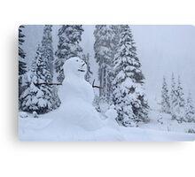 Snowman's Paradise Metal Print