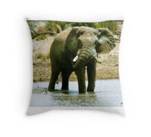 The Last Walkabout Series Throw Pillow