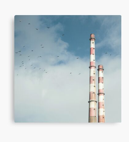 Pigeon House Canvas Print
