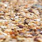 Shell Grit Redcliffe by mandyemblow