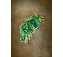 Green Bird - Fractal Art Photographic Print