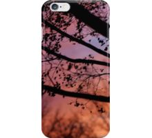 Sunset in the Maple Tree iPhone Case/Skin