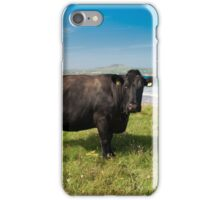Kerry Cow iPhone Case/Skin