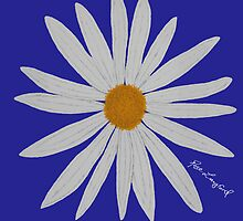WHITE DAISY BLUE by RoseLangford