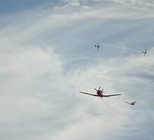 Bombing Run by bsn-photography