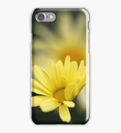 potential iPhone Case/Skin