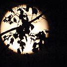 Moon Over Sudbury by Steven Squizzero