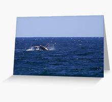 Humpback mother and baby Greeting Card