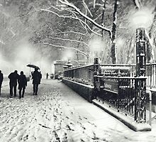 Winter Night - New York City by Vivienne Gucwa