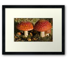 fly agaric: gnome real estate Framed Print