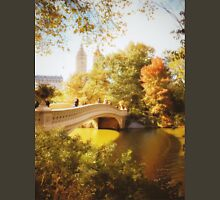 Autumn - Central Park - Bow Bridge - New York City Womens Fitted T-Shirt