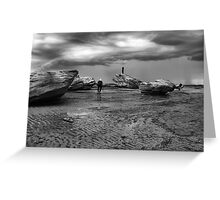 Rock Photographers Greeting Card