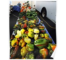 Fall Vegetable Line UP  Poster
