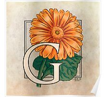 G is for Gerbera Poster