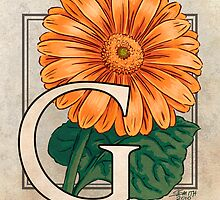 G is for Gerbera by Stephanie Smith